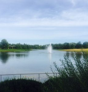 Chicago Botanic Garden soothes smooths away stress after work. Photos by Jodie Jacobs