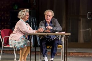 Paula Scrofano and John Reeger in 'The Gin Game' at Drury Lane Theatre. Photo by Brett Beiner