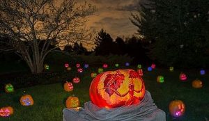 1000 jack-o'-lanterns light up Chicago Botanic Garden paths.
