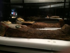 A Young boy and a young girl from Egypt about 250 AD are in the Mummies exhibit at the Field. Jodie Jacobs photo